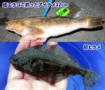 釣り日記2007-9-30